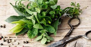 Herbs with scissors