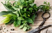 Herbs to Treat Gout