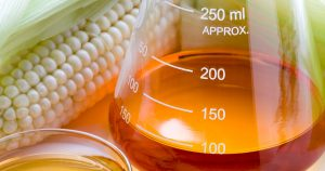 Beaker of fructose with cob of corn in background